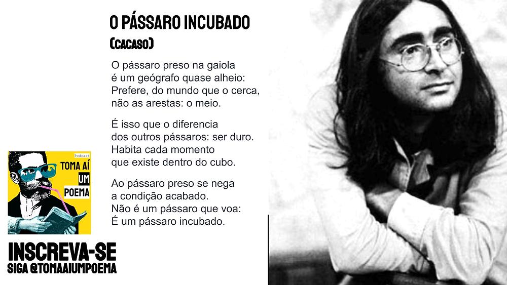 Poesia Brasileira Cacaso o Pássaro incubado