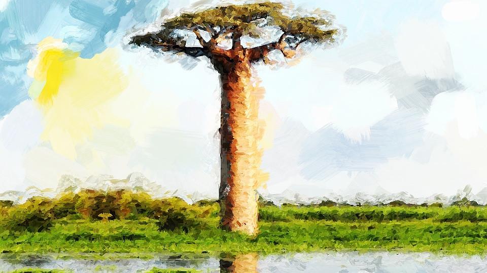lenda africana o baoba