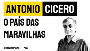 Antonio Cicero - Poema O País das Maravilhas | Poesia Brasileira