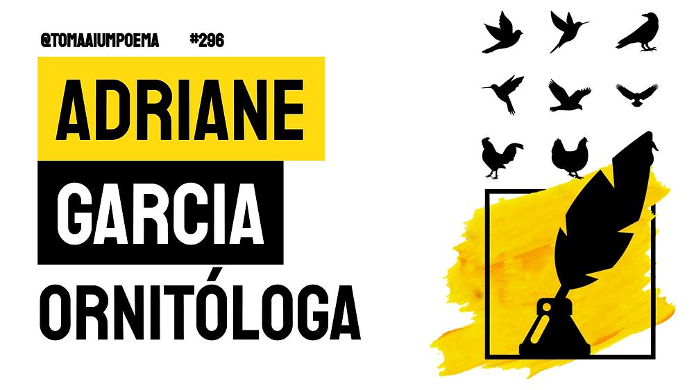 ornitologa poesia brasileira contemporana