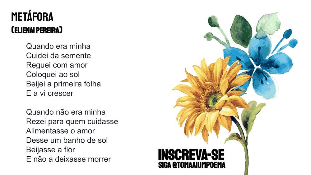 Elienai Pereira poema metáfora