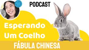Esperando Um Coelho- Jéssica Iancoski   Fábula Chinesa