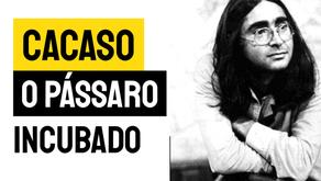 Cacaso - Poema O Pássaro Incubado | Poesia Brasileira