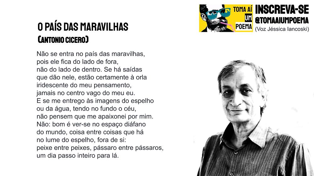 Antonio cicero poemas o país das maravilhas