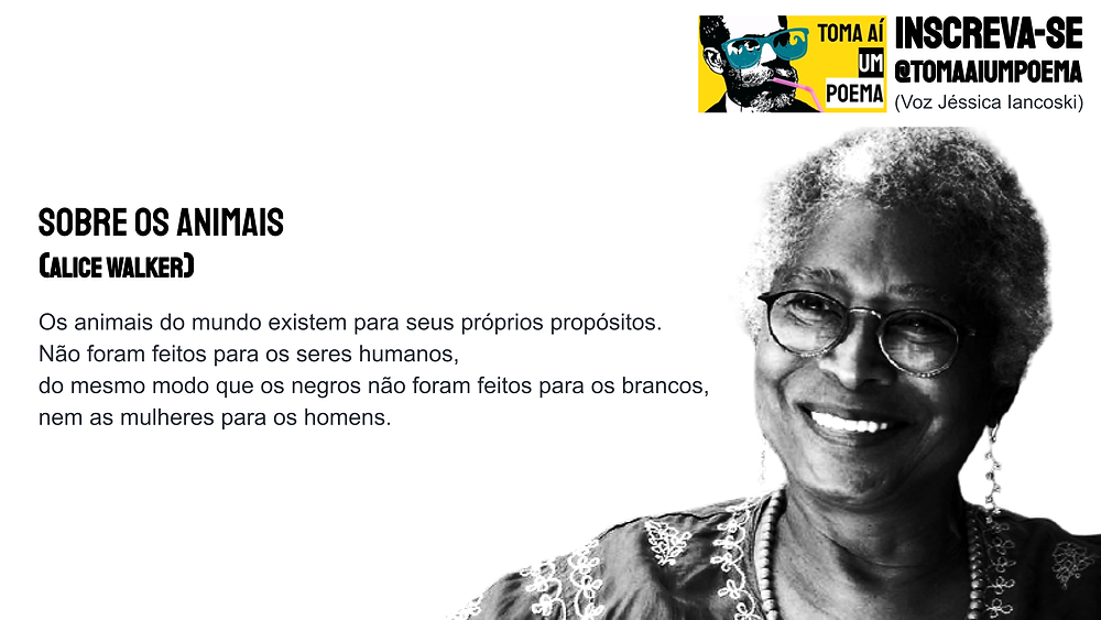 Alice walker sobre os animais