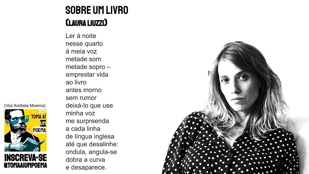 Poesia brasileira contemporânea laura liuzzi