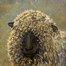 marley sheep.jpg