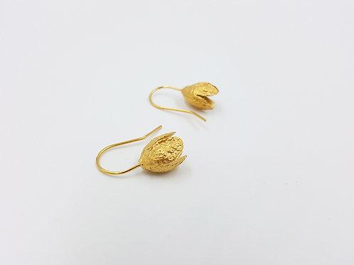 Boucles d'oreilles JARDIN MÉDITERRANÉEN - faînes de Hêtre
