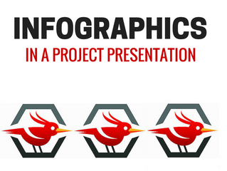 Infographics in a project presentation