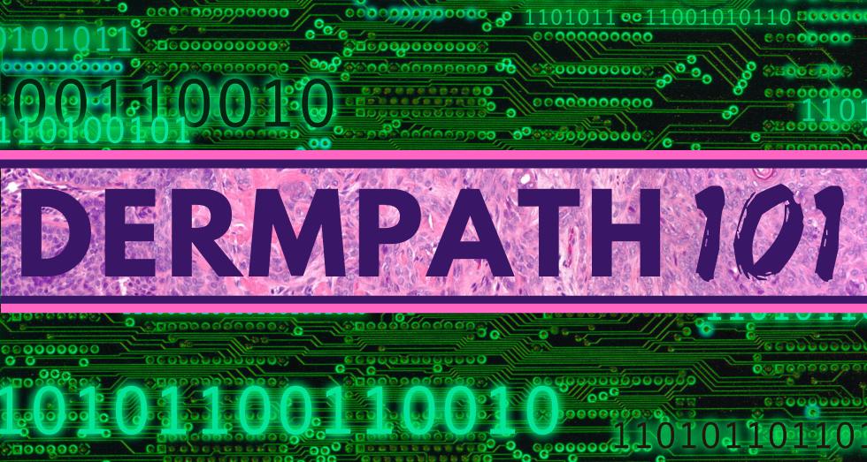 DERMPATH101 V4.png