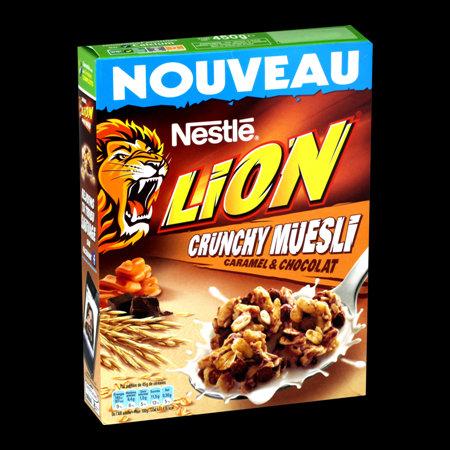 Nestle Lion Breakfast Cereal 480g