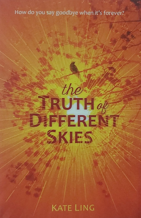 The Truth of Different Skies: Book 3 (Ventura Saga)