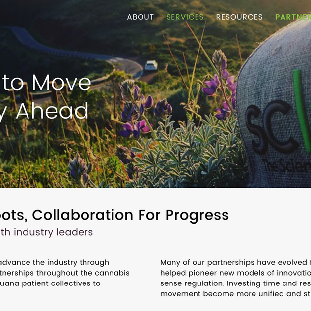 SC Labs Website Design
