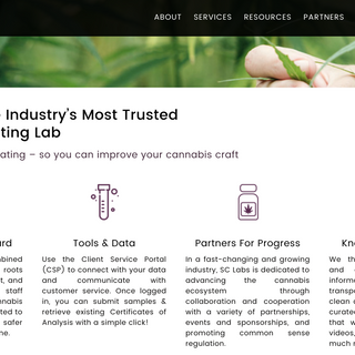 SC Labs Website & Icon Design