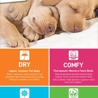 Pet Links Product Design