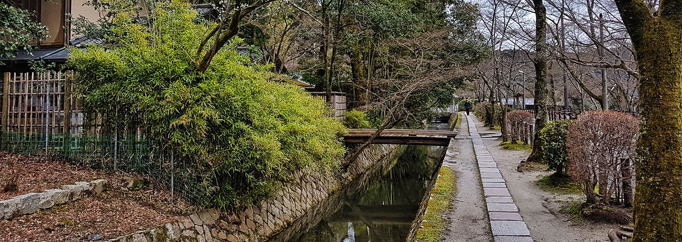 philosopher's walk, camino del filosofo kioto, kyoto