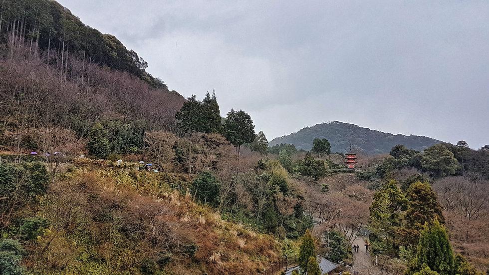 kiyomizu-dera, kyoto, kioto japan, japon