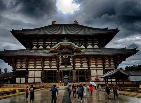 ¿Santuario o Templo? / Sanctuary or Temple?