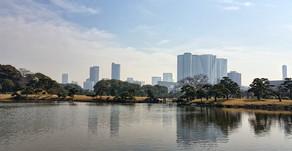 Tokyo esencial III / Tokyo essential 3