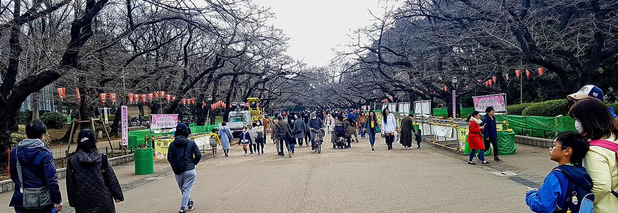 ueno, ueno park, tokio, tokyo