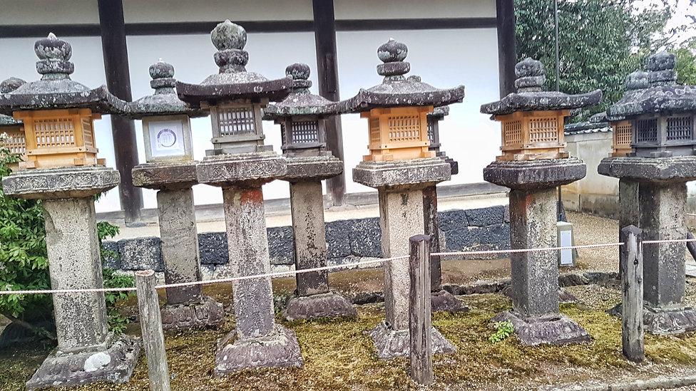 kasugataisa, kasuga-taisa, nara, japon, japan