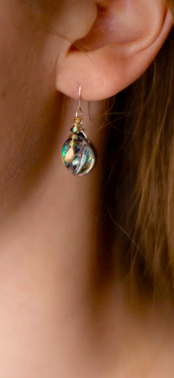Abalone Drops #G11