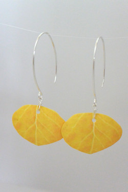 Yellow Aspen Leaf #E81
