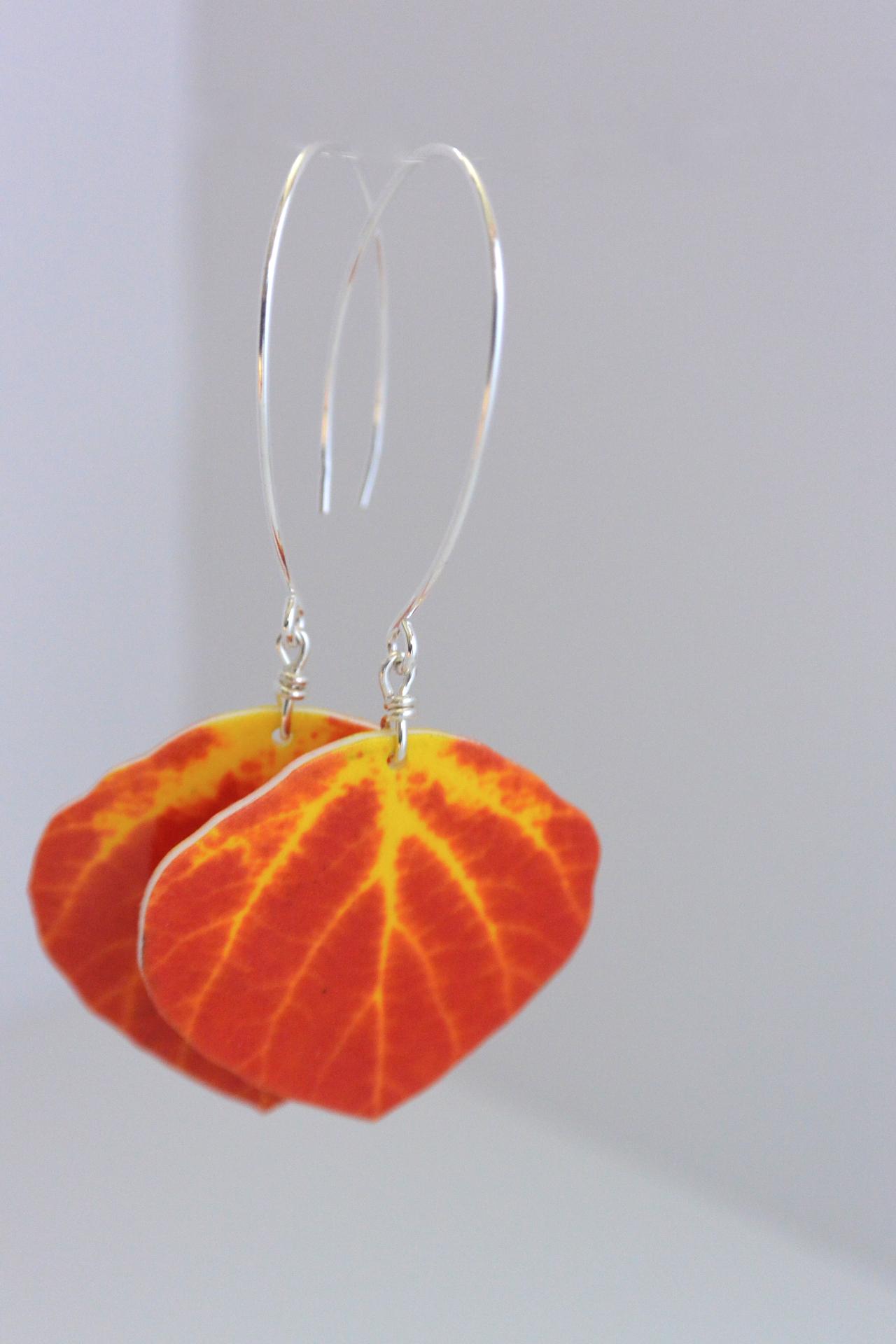 Red Aspen Leaf #E84