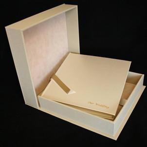 Ivory Shimmer leather..jpg