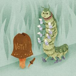 3 VOTER