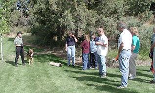 K9-Behavior Co | Oregon | Dog Bite Prevention Training |  Encountering Dogs on the Job | Skills | Dog Bite Prevention | USA