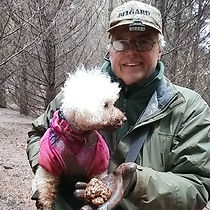 K9-Behavior | Truffle Training | Truffle Dog | Train Your Dog to Hunt Truffles | Truffle Hunting Dog | Good Truffle hunters