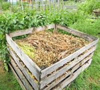 Create a composting area