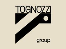 Tognozzi