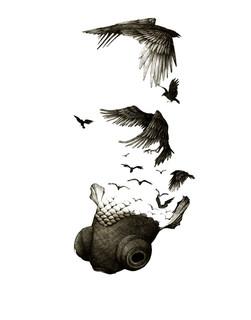 Goldfish Raven