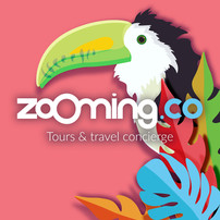 ZOOMING.CO MARKETING