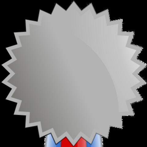 Silver ($51 -$199)