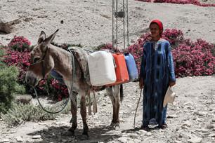 [RSI News] Assetati - Penuria d'acqua in Tunisia