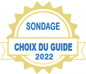 badgeOFFICIELchoix22_sondage.png