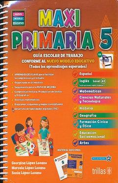 Maxi primaria 5