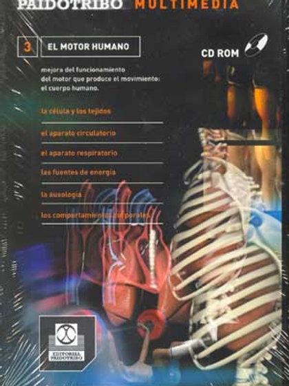 Cd Rom multimedia. El motor humano. descripción y mejora del funcionamiento del