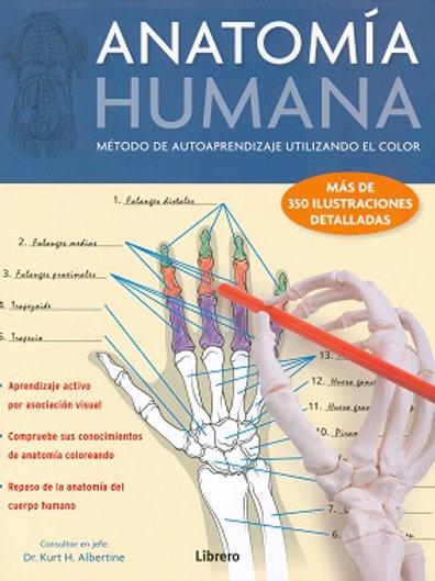 Anatomia humana. metodo de autoaprendizaje utilizando el color