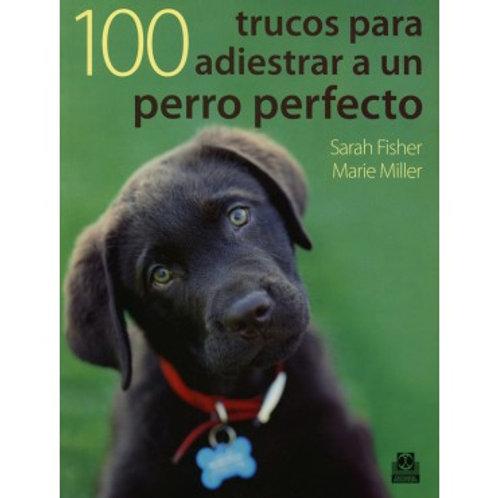 Cien trucos para adiestrar un perro perfecto (color)