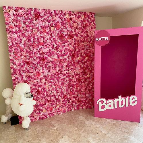 Barbie Backdrop Package