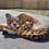 Thumbnail: Safari Animals