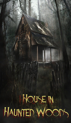 HOUSE IN HAUNTED WOODS