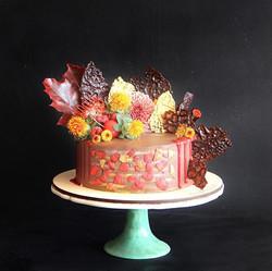 шоколадный торт заказать спб20