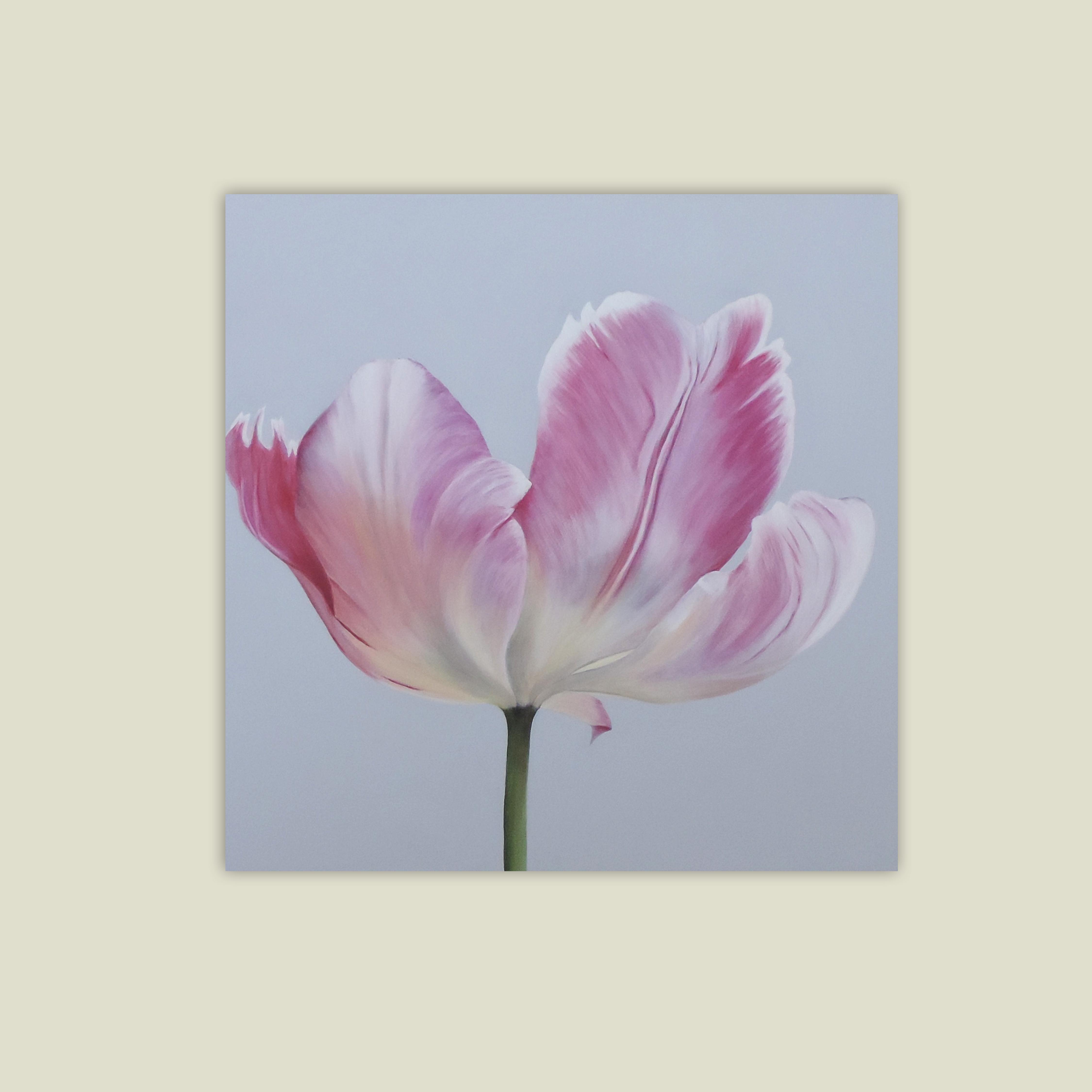 Magenta Tulip  SOLD