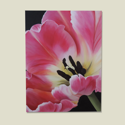 Large Magenta Tulip SOLD