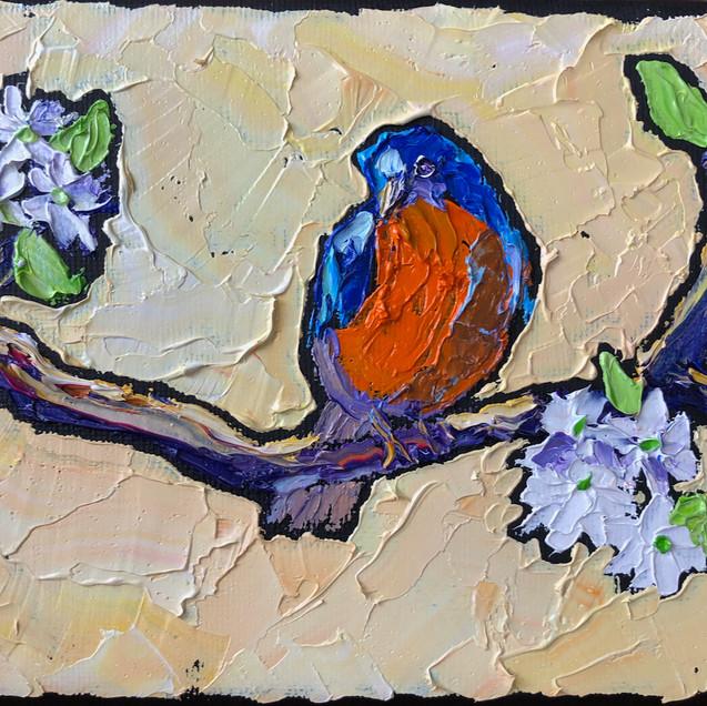 B 200316C bluebird with blossom.jpeg